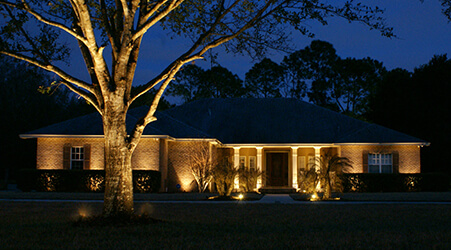 Silhouette Landscape Lighting