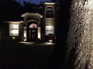 Landscape Lighting House and Tree
